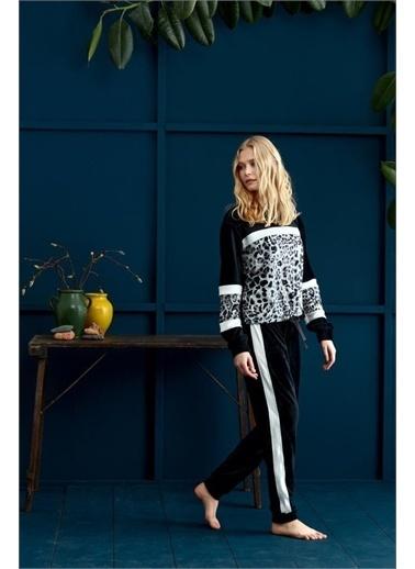Penye Mood 8954 Pijama Takım Siyah